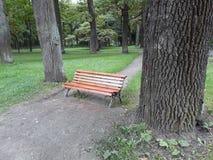 Banco vazio entre as árvores Modo do outono imagens de stock