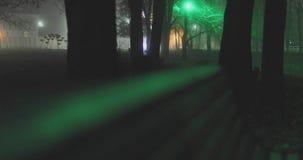Banco vazio no parque da noite do inverno video estoque