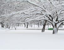Banco verde no inverno Fotos de Stock
