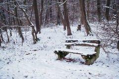 Banco viejo de madera en el bosque del invierno fotografía de archivo
