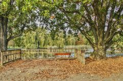 Banco vuoto della foto di HDR nel parco in autunno, Praga di Stromovka Fotografie Stock