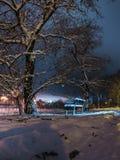 Banco y árboles en la nieve en la noche Fotografía de archivo libre de regalías