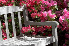 Banco y flores del jardín Imagen de archivo libre de regalías