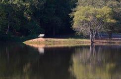 Banco y lago de parque Fotos de archivo libres de regalías