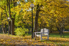 Banco y linterna en Autumn Park Fotos de archivo libres de regalías