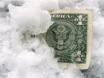 Banconota congelata Immagine Stock