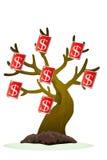 Banconota del dollaro Immagine Stock