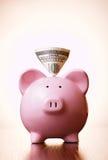 Banconota del dollaro nella scanalatura di un porcellino salvadanaio Immagine Stock