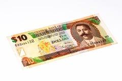 Banconota di currancy del Sudamerica Immagine Stock Libera da Diritti