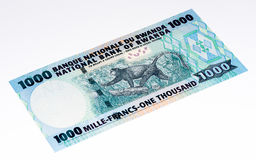 Banconota di valuta dell'Africa Immagini Stock