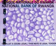 Banconota di valuta dell'Africa Immagine Stock Libera da Diritti