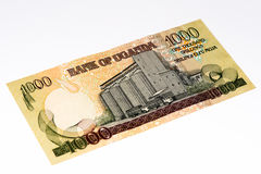 Banconota di valuta dell'Africa Immagini Stock