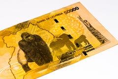 Banconota di valuta dell'Africa Immagine Stock
