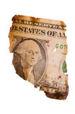 Banconota in dollari bruciata Fotografia Stock