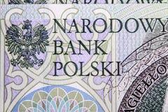 Banconota 100 PLN Immagini Stock