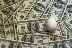 banconote 100$ e un uovo Fotografie Stock Libere da Diritti