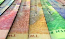 Banconote allineate del primo piano Fotografie Stock Libere da Diritti