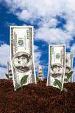 Banconote del dollaro su suolo Immagini Stock Libere da Diritti
