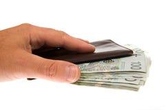 Banconote isolate su bianco Immagini Stock Libere da Diritti