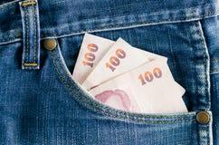 Banconote nel poket posteriore Fotografia Stock Libera da Diritti