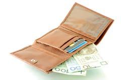 Banconote polacche in raccoglitore Fotografia Stock