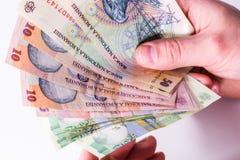 Banconote rumene del leu, primo piano su fondo bianco Fotografie Stock