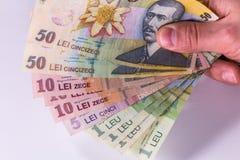 Banconote rumene del leu, primo piano su fondo bianco Immagine Stock Libera da Diritti