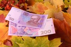 Banconote ucraine dei soldi di hryvnya sulle foglie Immagine Stock