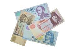Banconote ungheresi della forint Fotografie Stock