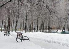 Bancos congelados en el parque del invierno Fotos de archivo
