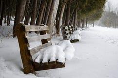 Bancos de parque cobertos de neve Imagem de Stock