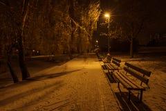 Bancos de parque congelados na noite Fotografia de Stock Royalty Free