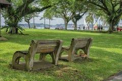 Bancos de parque en el parque con un gato que descansa en uno fotografía de archivo