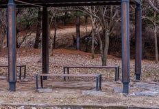 Bancos de parque de madeira em janeiro Foto de Stock Royalty Free