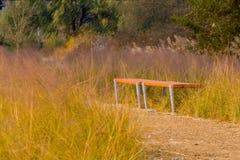 Bancos de parque de madera en hierba alta del invierno Foto de archivo