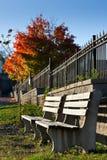 Bancos de parque vacíos en el otoño Fotografía de archivo libre de regalías