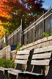 Bancos de parque vacíos en el otoño Fotos de archivo libres de regalías
