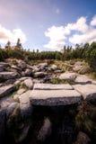 Bancos de piedra sobre un río salvaje imagen de archivo