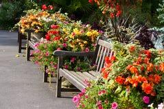 Bancos e flores Fotos de Stock Royalty Free