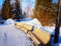 Bancos en el parque de la ciudad del invierno que se ha llenado de nieve Imagen de archivo libre de regalías