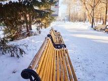 Bancos en el parque de la ciudad del invierno que se ha llenado de nieve Foto de archivo libre de regalías