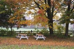 Bancos en otoño Imagenes de archivo