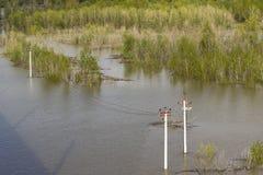 Bancos inundados no rio Ob Imagem de Stock