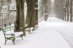 Bancos nevados en un parque Foto de archivo