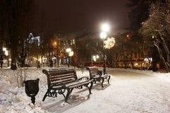 Bancos no parque do inverno imagens de stock royalty free