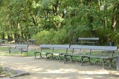 Bancos verdes no parque fotografia de stock