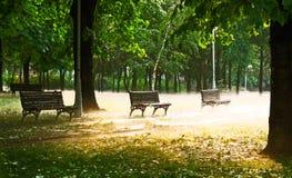 Bancos y niebla de parque Fotos de archivo libres de regalías