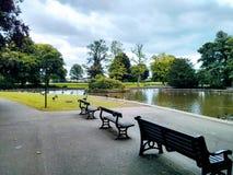 Bancs, canards, lac, South Park, Darlington images libres de droits