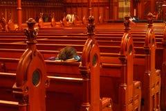 Bancs d'église Image stock