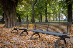 Bancs de parc en automne photo stock